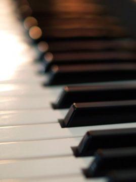 大人になってからのピアノ上達度の画像