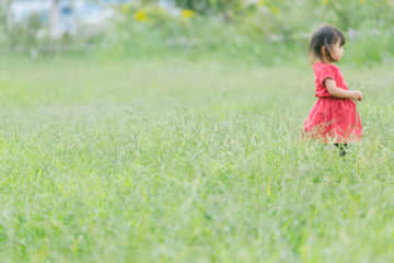 生徒さんは文京区、それとも台東区?どこの保育園/幼稚園/小学校が多いですか?の画像