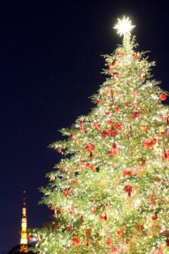 クリスマス会のおしらせの画像